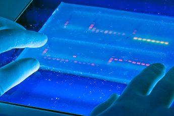 DNA per un marketing più preciso